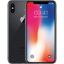 iPhone X Gris Sideral